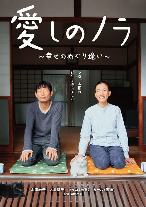 映画「愛しのノラ~幸せのめぐり逢い~」ビジュアル。