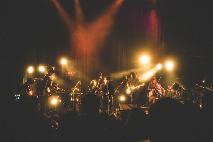 "「odol TOUR 2017 ""視線""」WWW公演の様子。(撮影:今井駿介)"