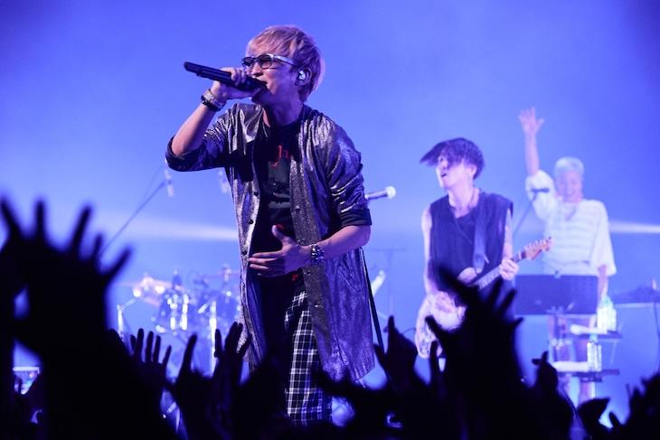 "「20th Anniversary Special ""Suga Shikao Asia Circuit""」東京・EX THEATER ROPPONGIの様子。(Photo by Mari Amita)"