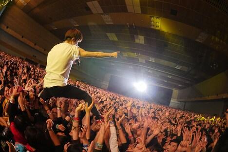 キュウソネコカミのライブの様子。(写真提供:FM802)
