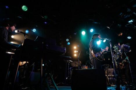 "warbear「warbear tour 2018 ""鳥と熊と野兎と魚""」東京・WWW公演の様子。(Photo by Shunsuke Irihi)"