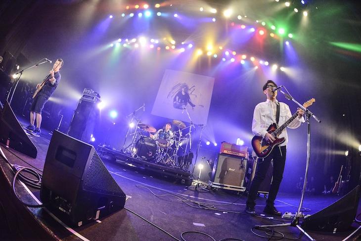 「フルカワユタカ presents『5×20』」でのDOPING PANDA。(撮影:橋本塁 [SOUND SHOOTER])