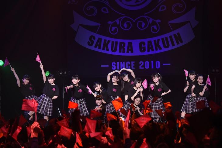 さくら学院「The Road to Graduation 2017 ~Sakura de Sacas~」アンコールの様子。
