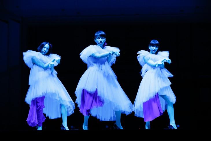 Perfume (撮影:上山陽介)