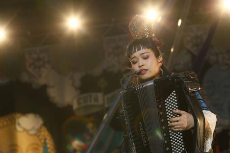 小春(Accordion)
