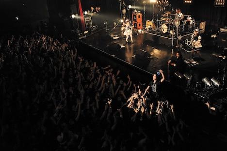 「BAND-MAID WORLD DOMINATION TOUR 2018【宣告】」 Zepp Tokyo公演の様子。(Photo by MASANORI FUJIKAWA)