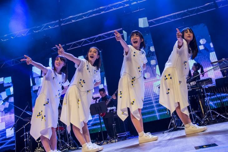 「sora tob sakana 4 th anniversary oneman live 『city light,star light』」の様子。