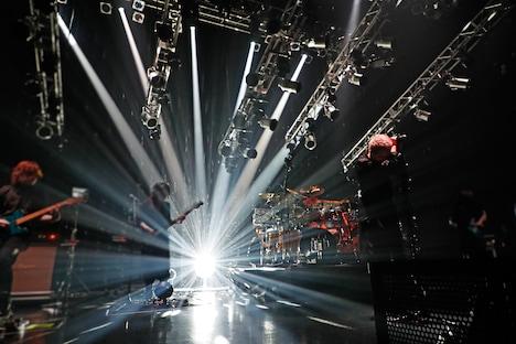 luz「luz 3rd TOUR -SISTER-」の様子。(撮影:小松陽祐[ODD JOB]、加藤千絵)