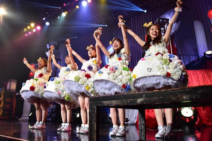 """チームしゃちほこ「""""TEAM SYACHIHOKO"""" THE LIVE ~FINAL~」の様子。"""
