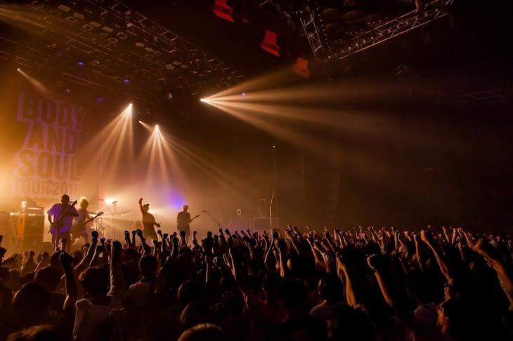 "SHADOWSのライブの様子。(Photo by Takashi ""TAKA"" Konuma)"