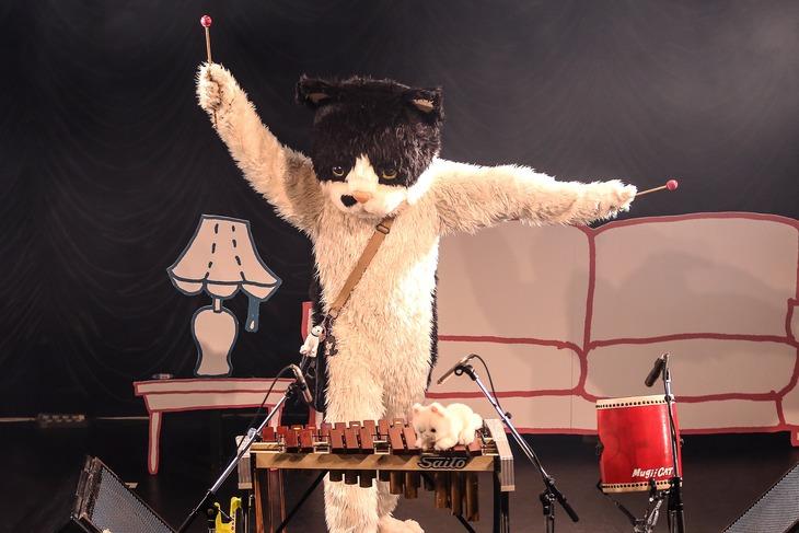昨日行われた「むぎ(猫)プレゼンツLIVE『Wonder Nyander 2018』【東京編 -ヒトの手も借りたいっ☆-】」の様子。