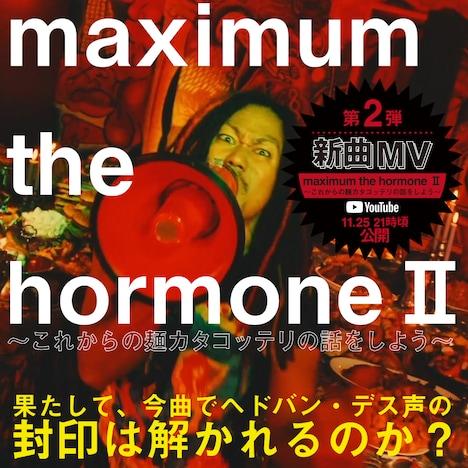 マキシマム ザ ホルモン「maximum the hormoneII~これからの麺カタコッテリの話をしよう~」告知ビジュアル