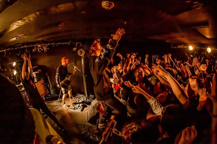 SHADOWS(Photo by TAKASHI KONUMA )