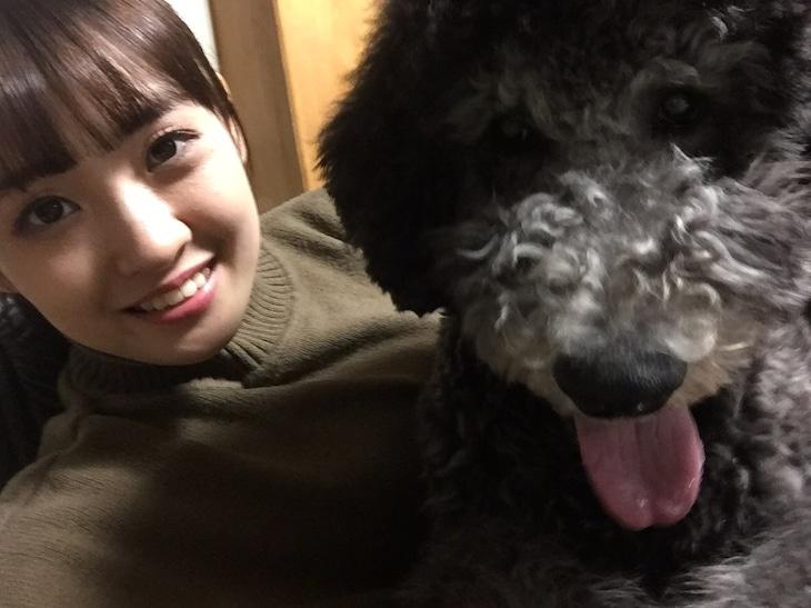 咲良菜緒(TEAM SHACHI)× 愛犬のポール