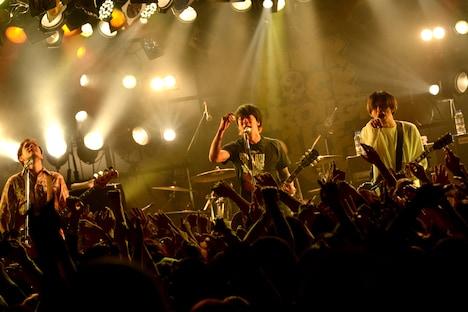 MONOEYES(撮影:半田安政[showcase])