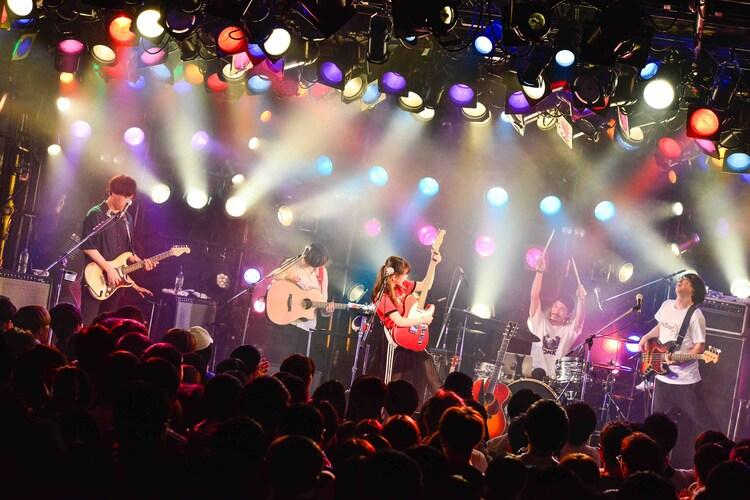 坂口有望「単、ジュン、メイ、会 tour」東京・渋谷CLUB QUATTRO公演の様子。(写真提供:EPICレコードジャパン)