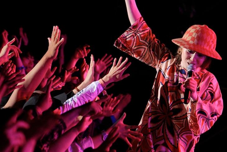 「CIRCLE'19」5月18日公演のEGO-WRAPPIN'のライブの様子。