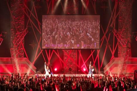 「炎上!」コールで盛り上がるZepp Tokyo。