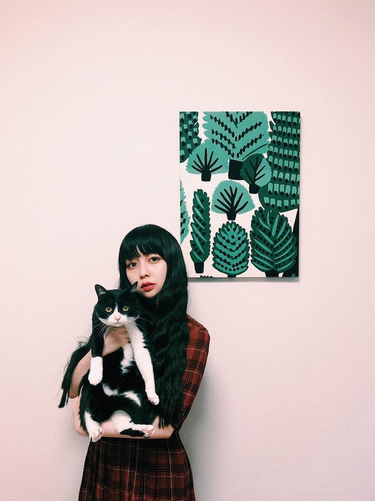 南波志帆× 愛猫のmame