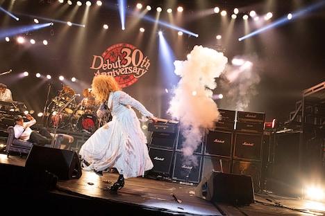 「メジャーデビュー 30th Anniversary FINAL LIVE『ザ・サン』突入 31st!」の様子。(撮影:コザイリサ)