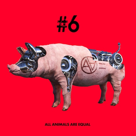 AA=「#6」ジャケット