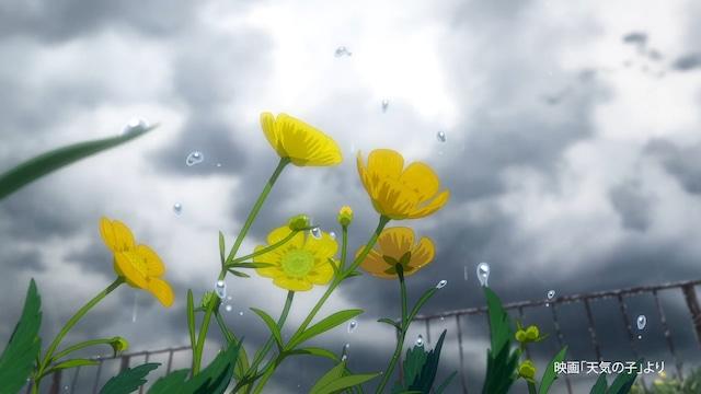 サントリー天然水の新CM「手のひらを空に(雨)」編より。(c)2019「天気の子」製作委員会