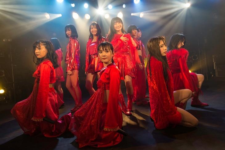 「monogatari 1000 sational tour 2019東京FINAL公演」の様子。(撮影:林晋介)