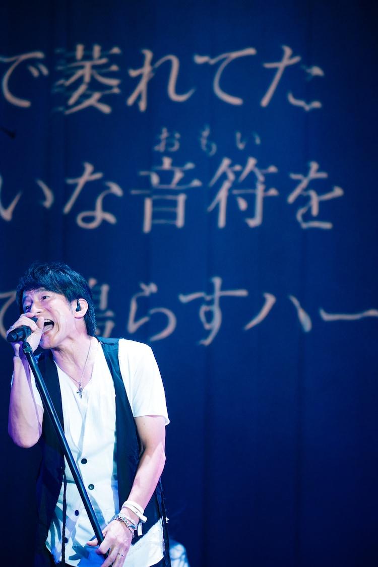 櫻井和寿(Photo by NAKANO Yukihide)