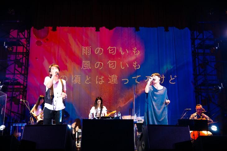 櫻井和寿とSalyu。(Photo by NAKANO Yukihide)