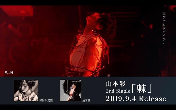 山本彩「棘」全曲試聴動画のワンシーン。