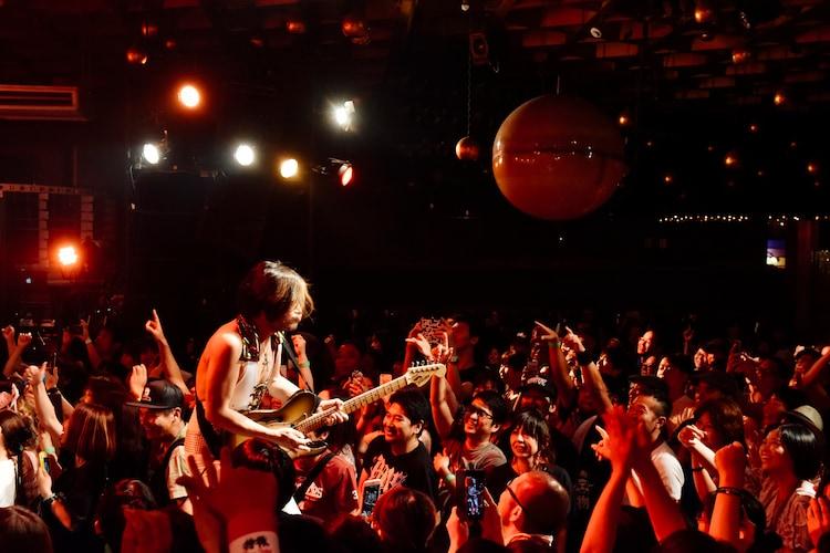 ROLLY & 大槻ケンヂ ROCK'N'ROLL SHOWのライブの様子。(撮影:タイコウクニヨシ)