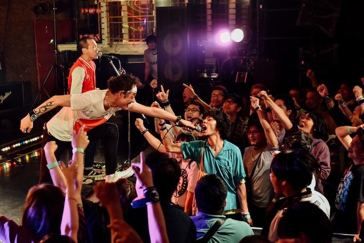 LAUGHIN' NOSEのライブの様子。(撮影:タイコウクニヨシ)