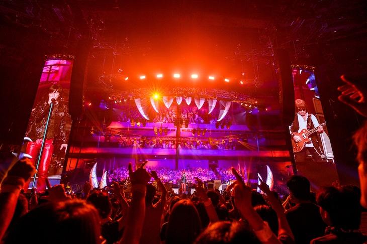 B'z「B'z LIVE-GYM 2019 -Whole Lotta NEW LOVE-」より、「WOLF」のステージの様子。(写真提供:VERMILLION RECORDS)