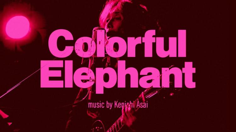 浅井健一「Colorful Elephant」ミュージックビデオのサムネイル。