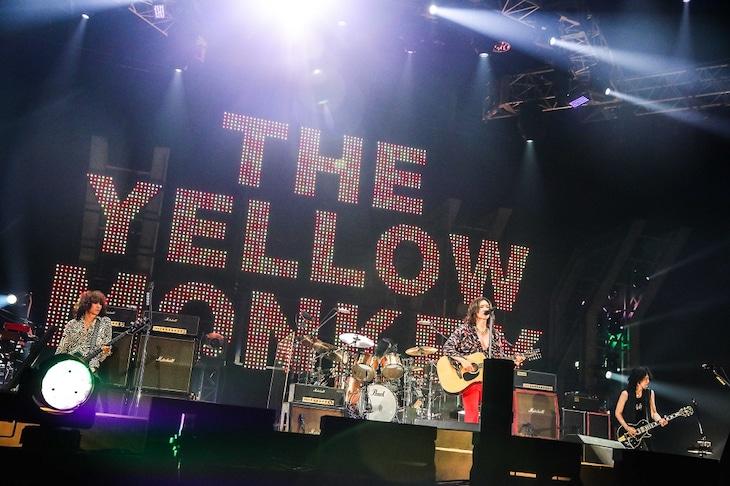 THE YELLOW MONKEY(撮影:渡邉一生)