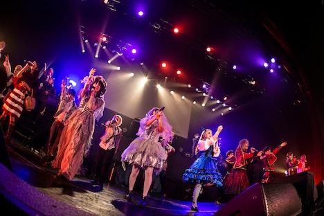 「GARNiDELiA Presents HALLOWEEN MiRACLE WANDER PARTY 2019」の様子。(撮影:冨田味我)