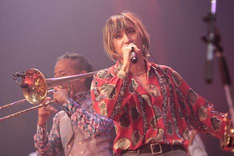 渋谷龍太(撮影:柴田恵理)
