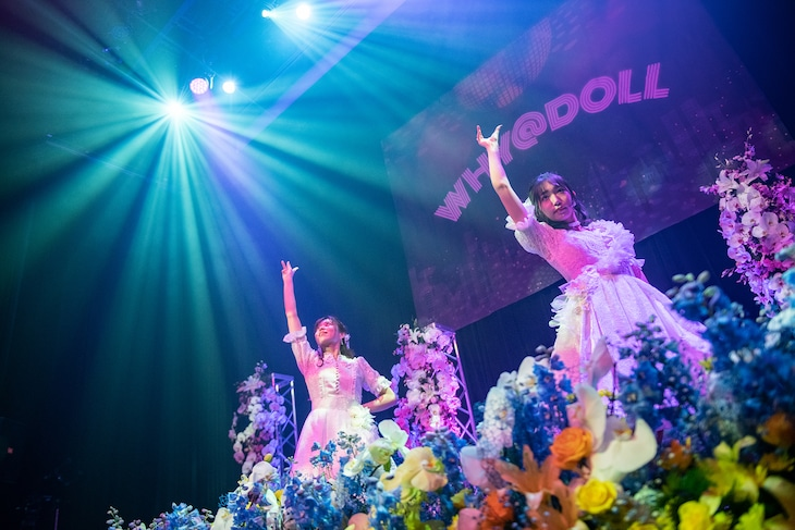 「WHY@DOLLラストライブツアー ~We are always here for you~」最終公演の様子。