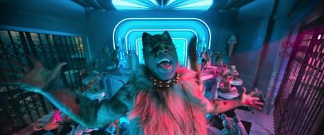 藤原聡が声を演じる猫のラム・タム・タガー。