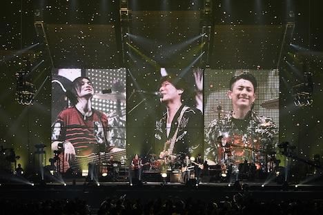 back number「NO MAGIC TOUR 2019」の様子。(写真提供:UNIVERSAL SIGMA)