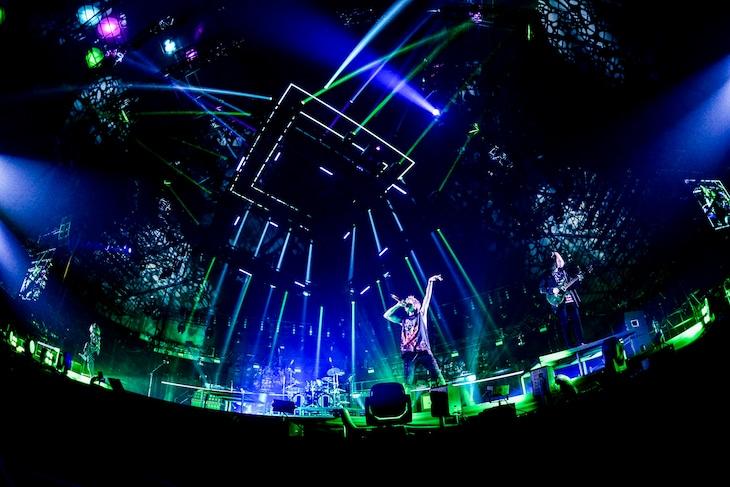 "「ONE OK ROCK 2019 - 2020 ""Eye of the Storm"" JAPAN TOUR」東京・国立代々木競技場第一体育館公演の様子。(Photo by Rui Hashimoto [SOUND SHOOTER])"