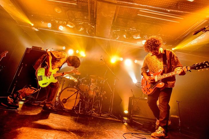 ズーカラデル「全国ツアー」大阪・Music Club JANUSの様子。(撮影:河上良)