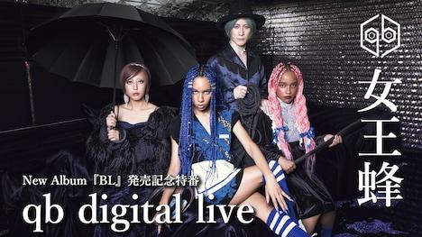 「女王蜂 New Album『BL』発売記念特番『qb digital live』」告知ビジュアル