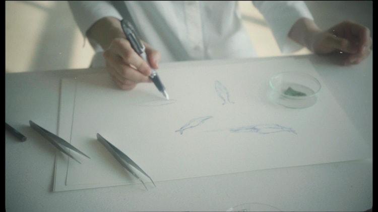 寺尾紗穂「北へ向かう」ミュージックビデオのワンシーン。