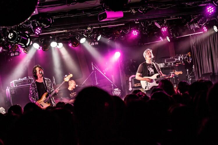MOON・BEAM(Photo by Chiyori)
