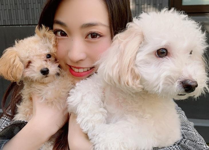 鈴木友梨耶とゾロ、ジョナ。