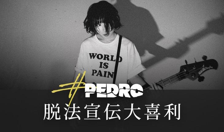PEDRO「#PEDRO脱法宣伝大喜利」ビジュアル