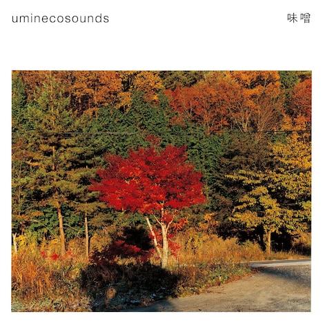 uminecosounds「味噌」ジャケット