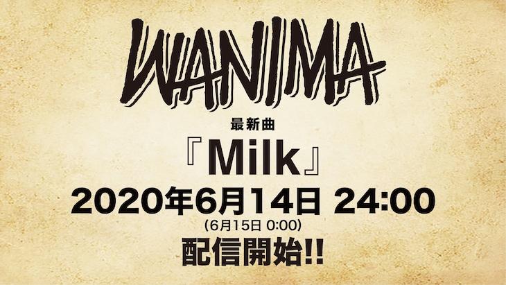 WANIMA「Milk」リリース告知画像