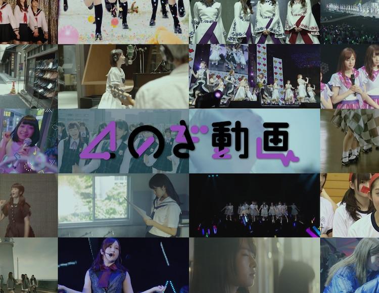 動画 乃木坂 46